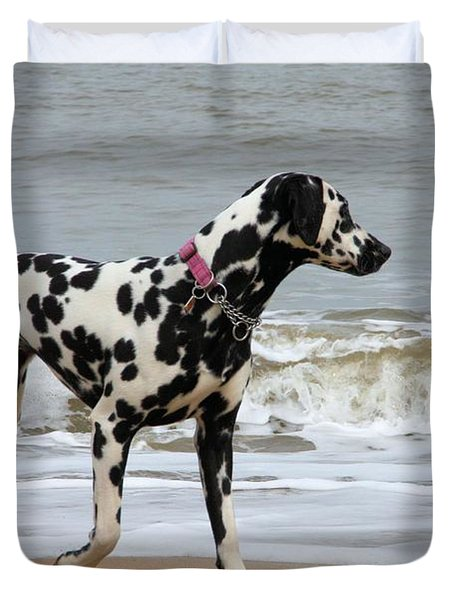 Dalmatian By The Sea Duvet Cover by Gordon Auld