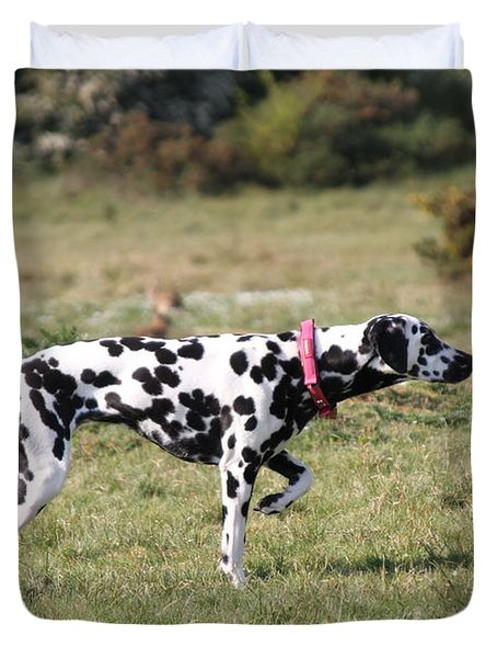 Dalmation Pretending To Be A Pointer Duvet Cover by Gordon Auld