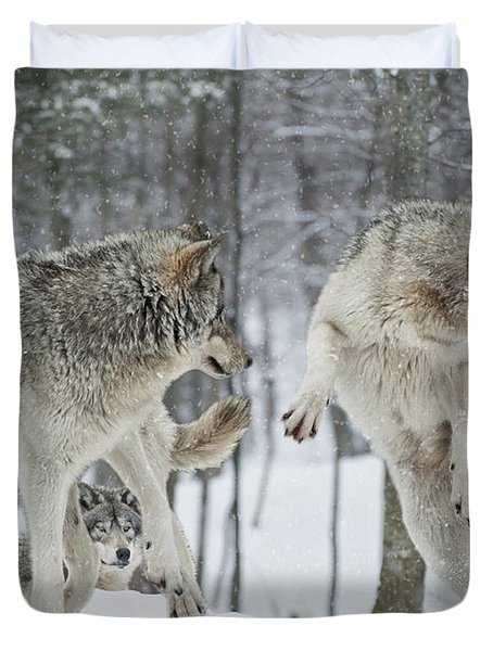 Duvet Cover featuring the photograph Dances With Wolves by Wolves Only