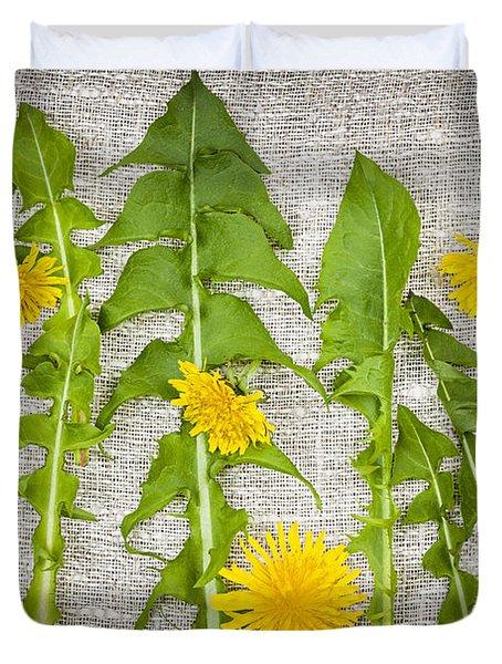 Dandelion Greens And Flowers Duvet Cover