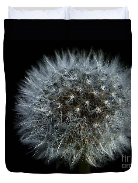 Dandelion Seed Head On Black Duvet Cover