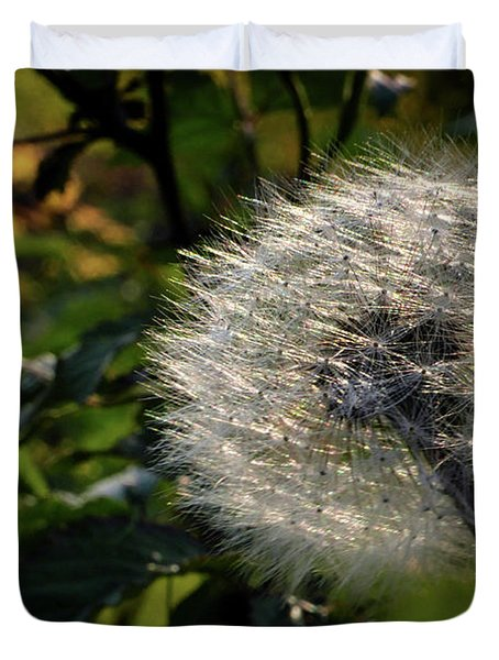 Dandelion Seeds Ready To Be Dispersed Duvet Cover