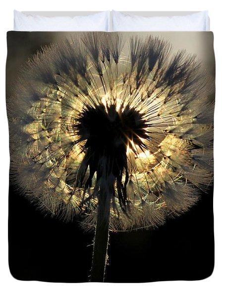 Dandelion Sunrise - 1 Duvet Cover