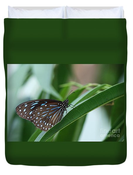 Dark Blue Tiger Butterfly #2 Duvet Cover by Judy Whitton