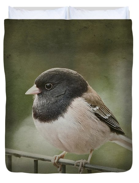 Dark-eyed Junco  Duvet Cover