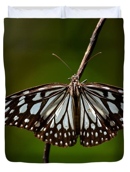 Dark Glassy Tiger Butterfly On Branch Duvet Cover