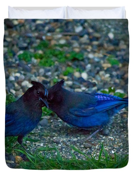 Darling I Have To Tell You A Secret-sweet Stellar Jay Couple Duvet Cover by Eti Reid