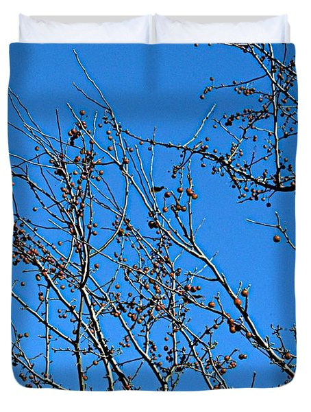 Dave's Blue Sky Duvet Cover by Joseph Yarbrough