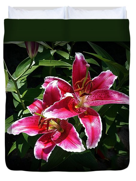 Duvet Cover featuring the photograph Pretty Lilies by Nick Kloepping