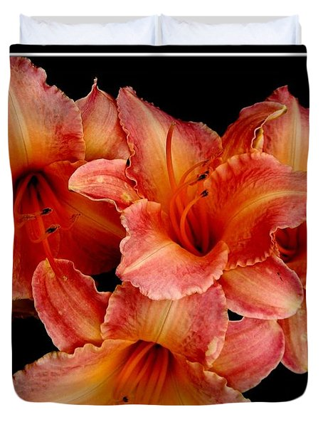 Duvet Cover featuring the photograph Daylilies 1 by Rose Santuci-Sofranko