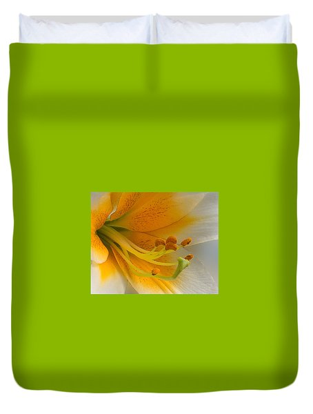 Gold Daylily Close-up Duvet Cover