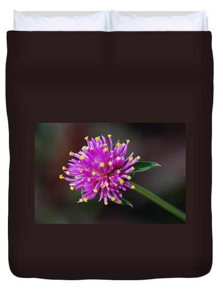 Duvet Cover featuring the photograph Dbg 050812-1779 by Tam Ryan