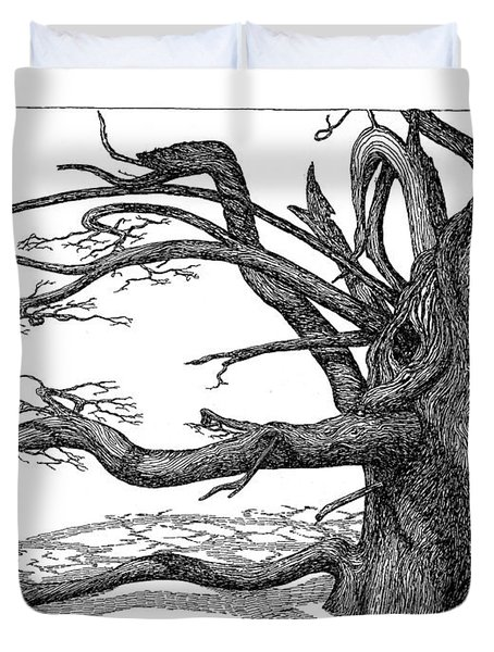 Duvet Cover featuring the drawing Dead Tree by Daniel Reed
