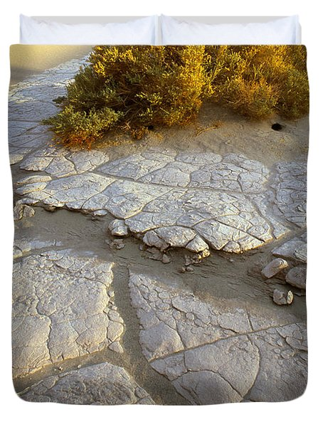 Death Valley Mudflat Duvet Cover by Inge Johnsson