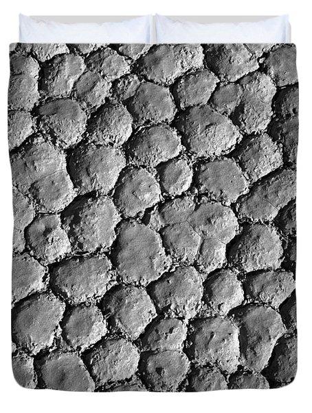 Death Valley Playa Duvet Cover