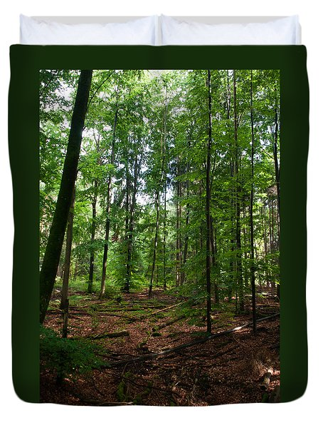 Deep Forest Trails Duvet Cover