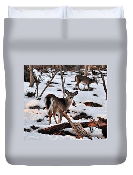 Deer And Snow Duvet Cover