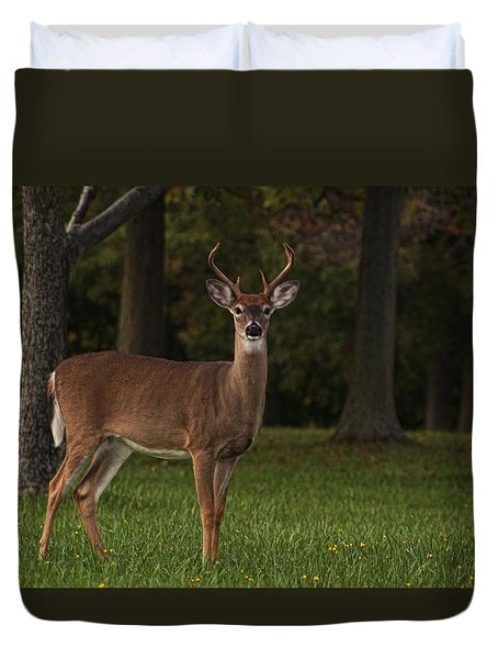 Duvet Cover featuring the photograph Deer In Headlight Look by Tammy Espino