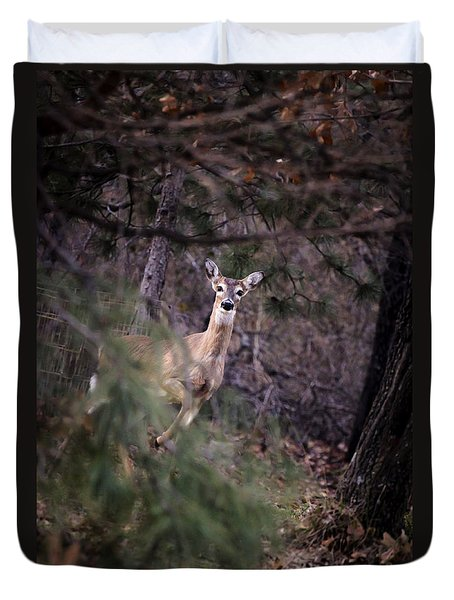 Deer's Stomping Grounds. Duvet Cover
