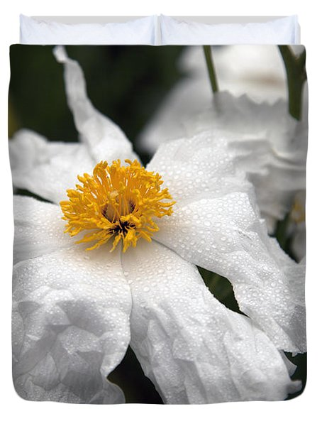 Delicate Dew Duvet Cover by Amanda Barcon