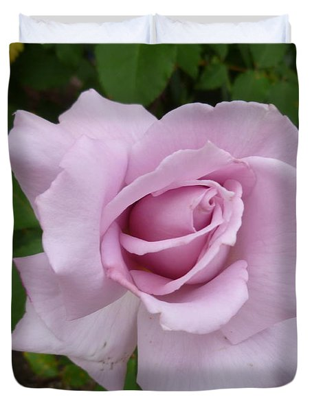Duvet Cover featuring the photograph Delicate Purple Rose by Lingfai Leung