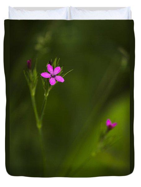 Deptford Pink Duvet Cover by Christina Rollo