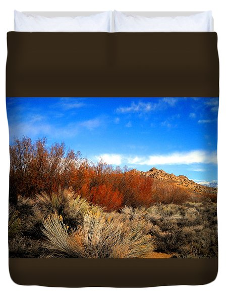 Desert Colors Duvet Cover