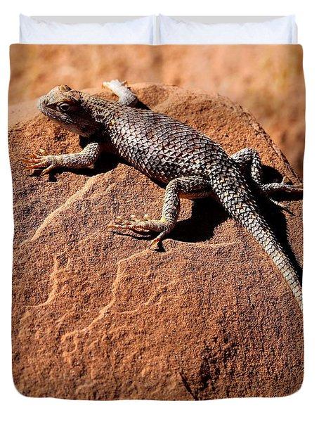 Desert Spiny Lizard Duvet Cover by Marty Fancy