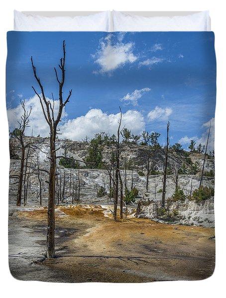 Desolation Yellowstone National Park Duvet Cover