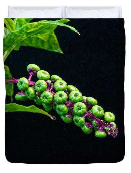 Developing Poke Berry Seeds Duvet Cover