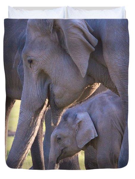Dhikala Elephants Duvet Cover