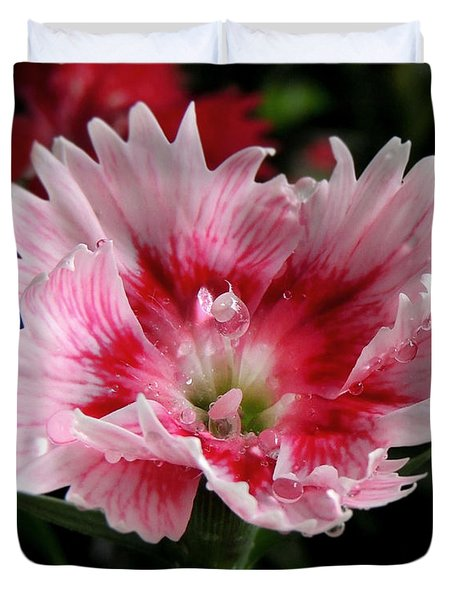 Duvet Cover featuring the photograph Dianthus by Kristine Merc