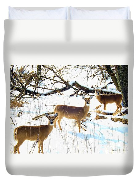 Does In The Snow Duvet Cover