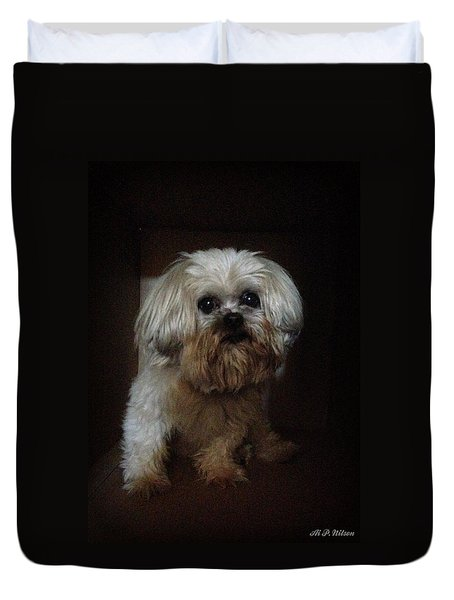 Dog In The Box Duvet Cover
