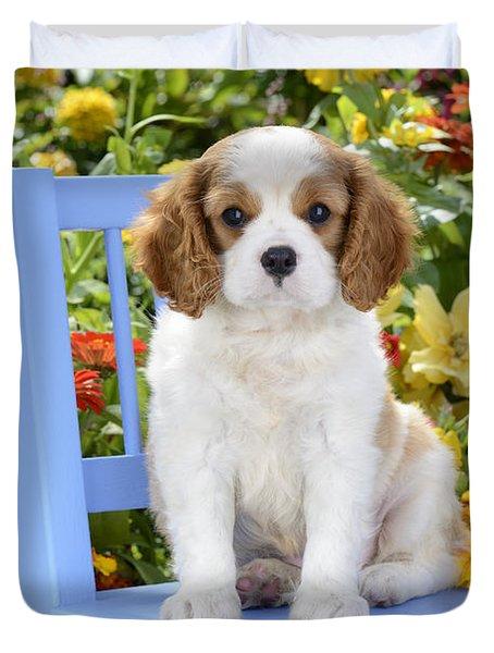 Dog On Blue Chair Duvet Cover