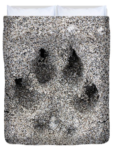 Dog Paw Print In Sand Duvet Cover by Elena Elisseeva