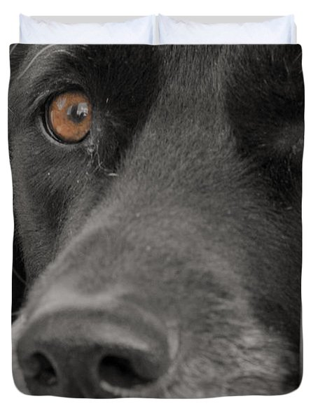 Dog Peek A Boo Duvet Cover