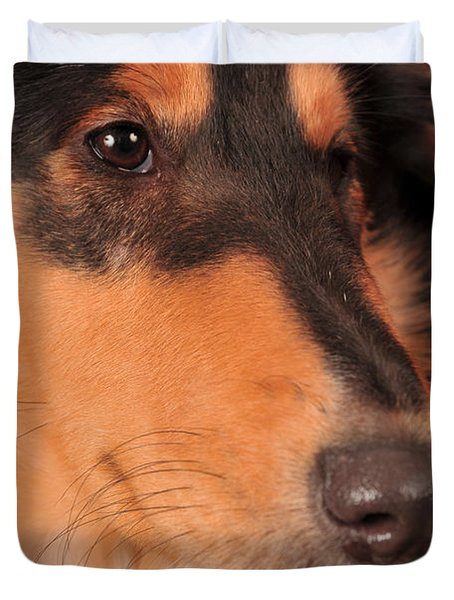 Duvet Cover featuring the photograph Dog Portrait by Randi Grace Nilsberg
