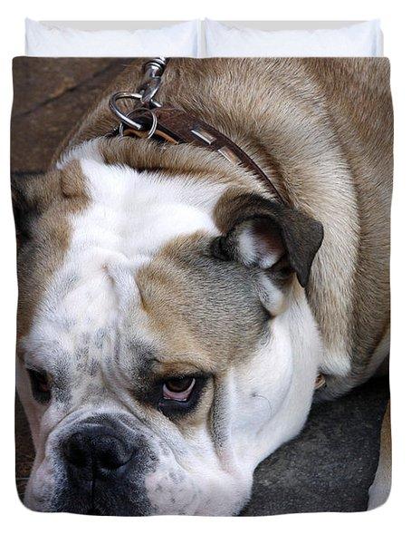 Dog. Tired. Duvet Cover