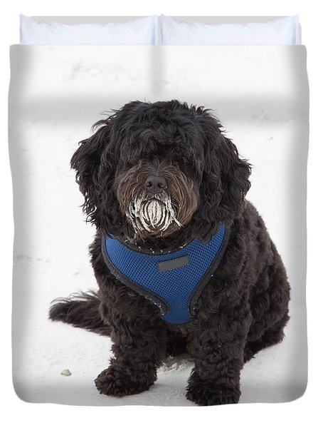 Doggone Good Beach Fun Duvet Cover