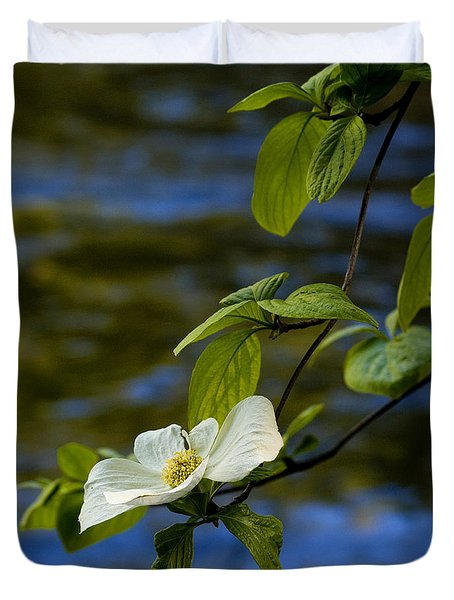 Dogwood On The Merced Duvet Cover by Bill Gallagher
