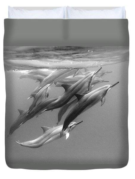 Dolphin Pod Duvet Cover by Sean Davey