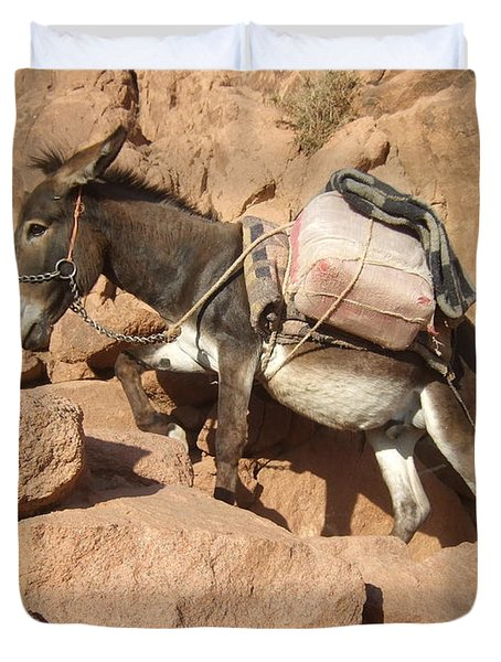 Donkey Of Mt. Sinai Duvet Cover