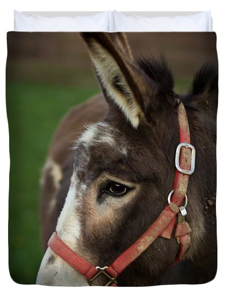 Donkey Duvet Cover by Shane Holsclaw