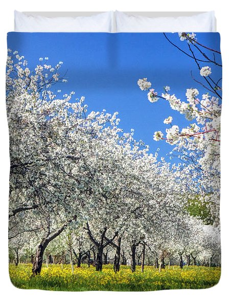 Door County Cherry Blossoms Duvet Cover