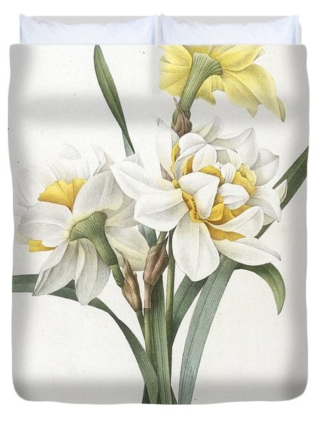 Double Daffodil Duvet Cover by Pierre Joseph Redoute