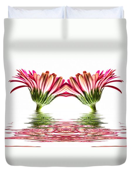 Double Pink Gerbera Flood Duvet Cover by Steve Purnell