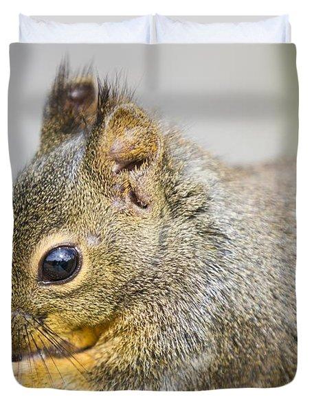 Douglas Squirrel  Duvet Cover