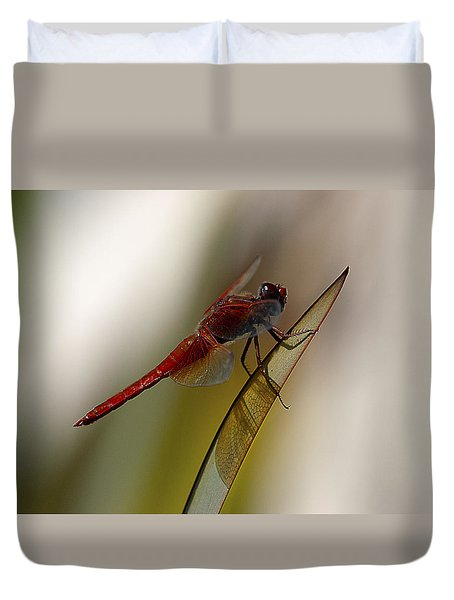 Duvet Cover featuring the photograph Dragonacious by Joe Schofield