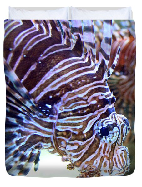 Dragonfish In Tandem Duvet Cover by Sandi OReilly